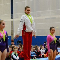 WAG National/Regional Level 2-5 All Round 2015