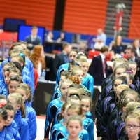 WAG Level 2-9 Apparatus Competition 2014 Final