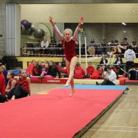WAG Regional Level 2-9 All round Competition