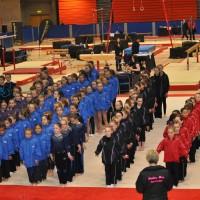 Women's Artistic Level 2 Apparatus & Regional Team Finals 2013