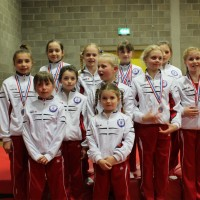 Regional Individual Apparatus and Team Competition 2013