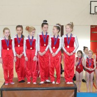 North Dublin Regional Gymnastics Competition
