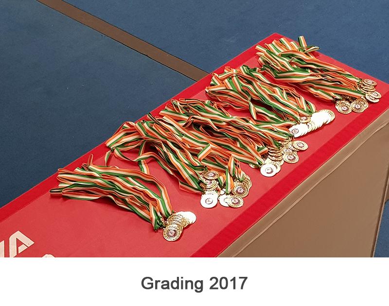 Grading 2017